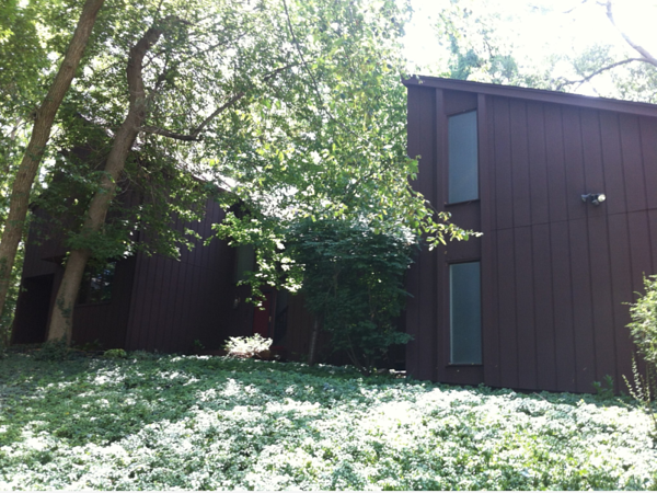 A photo of a contemporary home showing dark exteriors and overgrown landscaping