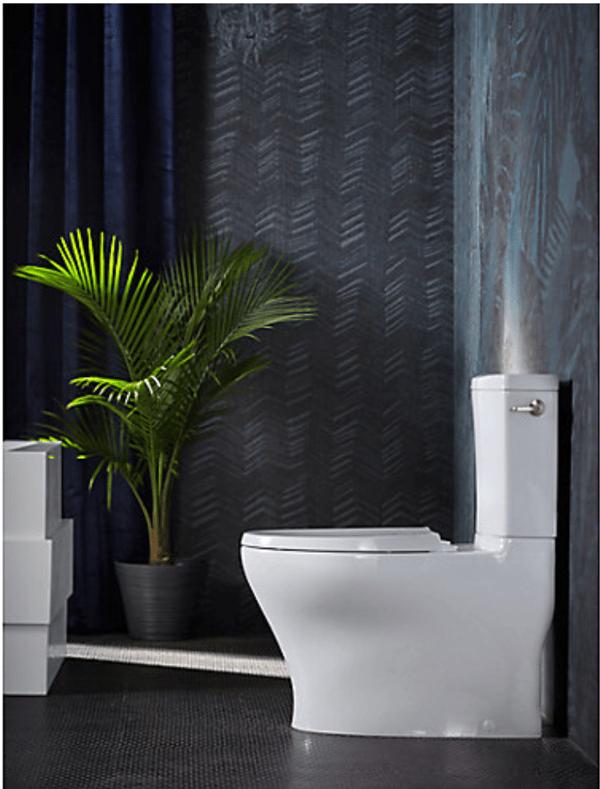 Photo of Kohler Pursuade Toilet